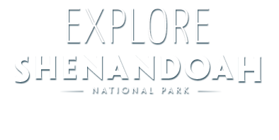 Explore Shenandoah National Park